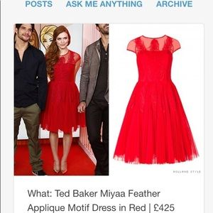 Ted Baker Miyya Feather Appliqué dress US size 6
